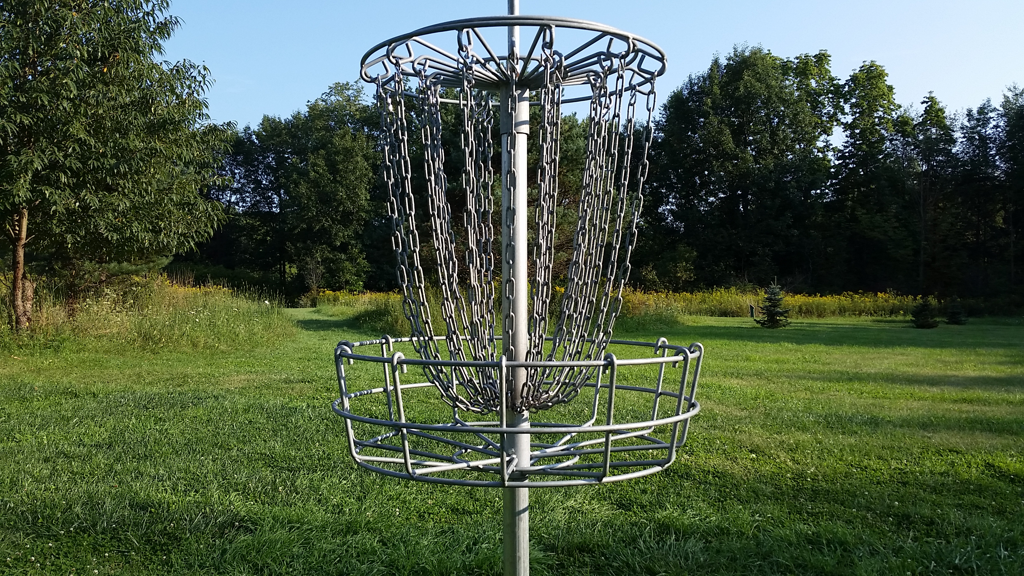 disc golf basket summer