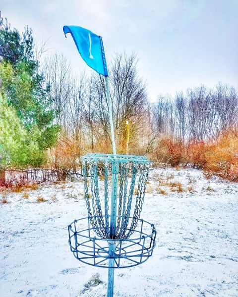 Winter Disc Golf Basket