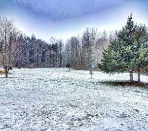 Winter Disc Golf Fairway