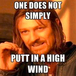 Disc Golf wind putting meme