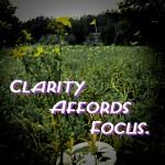 FocusQuote