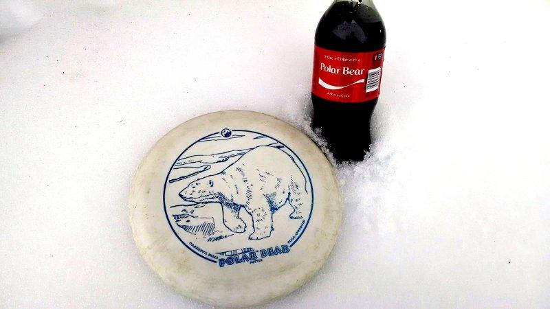 Daredevil Polar Bear