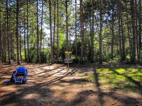 Getting better at disc golf takes practice