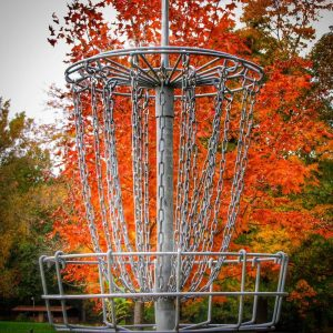 Fall Color Disc Golf Basket