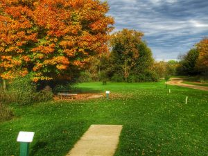 Beautiful Disc Golf Tee Pad with Fall Color