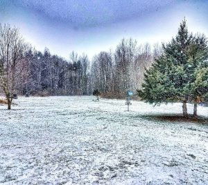Winter Disc Golf Fairway