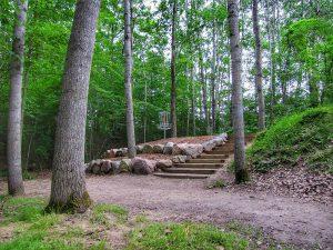 Wildwood Disc Golf Mt Pleasant